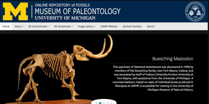 3 Museum of Paleontology UM
