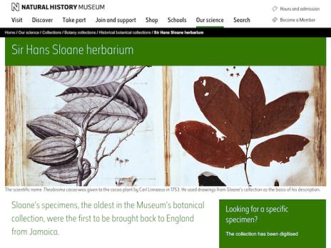 2 Sloane Herbarium sm