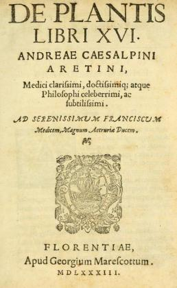 3 Cesalpino title